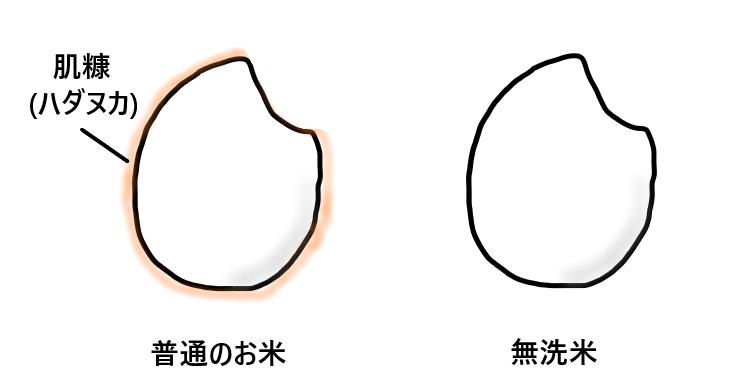 無洗米と普通のお米比較